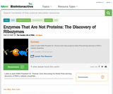 Enzymes That Are Not Proteins: The Discovery of Ribozymes