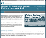 Wetland Ecology Insight through Field and Laboratory Study