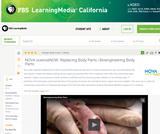 Bioengineering Body Parts