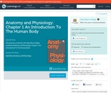 Anatomy and Physiology: Chapter 1 An Introduction To The Human Body
