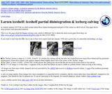 Larsen Iceshelf: Iceshelf Partial Disintegration and Iceberg Calving