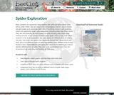 Spider Exploration