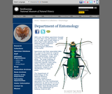 Department of Entomology, Smithsonian Institution