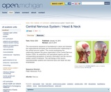 Central Nervous System / Head & Neck