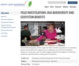 Field Investigations: Bug Biodiversity and Ecosystem Benefits