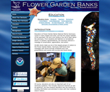 Flower Garden Banks National Marine Sanctuary Education Resources