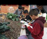 Compost -- Out Teach