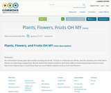 Plants, Flowers, Fruits OH MY