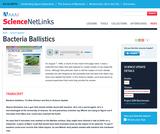 Bacteria Ballistics