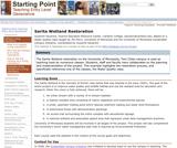 Sarita Wetland Restoration