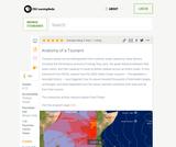 Anatomy of a Tsunami