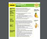 Health Literacy: Grade 2-3 Lesson, Pineapple
