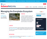 Managing the Everglades Ecosystem
