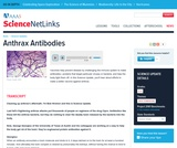 Anthrax Antibodies