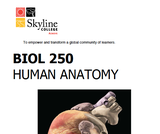 BIOL 250 Human Anatomy Lab Manual SU 19.pdf