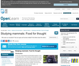 Studying Mammals: Food For Thought