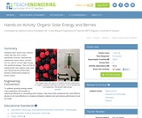 Organic Solar Energy and Berries