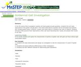 Goldenrod Gall Investigation