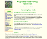 Vegetable Seed Saving Handbook