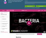 Biology: Bacteria