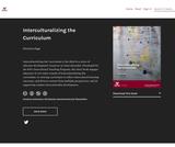 Interculturalizing the Curriculum