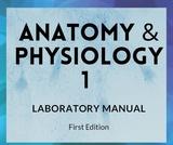Anatomy & Physiology 1 Lab Manual
