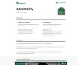 21st Century Skills: Adaptability
