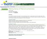 Making Sense of Macroinvertebrates