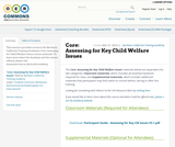 Core 2.5: Assessing for Key Child Welfare Issues