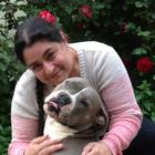 Suzanne Wakim's profile image