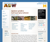 Apalone spinifera: Information