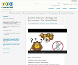 Learned Behaviour | Ecology and Environment | The Virtual School