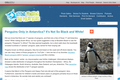 Penguins Only in Antarctica? It's Not So Black and White!