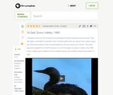Oil Spill: Exxon Valdez, 1989