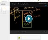 Finance & Economics: Chapter 7 Bankruptcy Liquidation