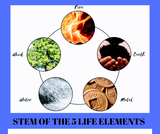 STEM OF THE 5 LIFE ELEMENS AİR