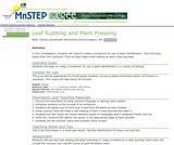 Leaf Rubbing and Plant Pressing