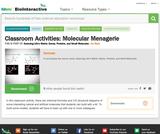 Molecular Menagerie