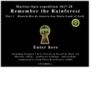 Remember the Rainforest 1