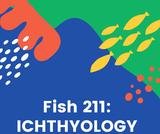 FISH 211: Ichthyology
