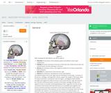 AP07 - Anatomy Physiology - Axial Skeleton