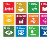 UN Sustainable Development Goals (SDGs) - Interactive Mind Map