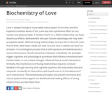 The Biochemistry of Love