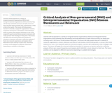Critical Analysis of Non-governmental (NGO) and Intergovernmental Organization (IGO) Mission Statements and Relevance