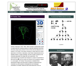 3D FractaL-Tree