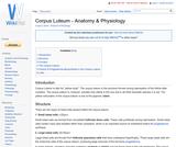 Corpus Luteum - Anatomy & Physiology