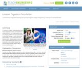 Digestion Simulation