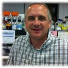 Mark Schneegurt's profile image