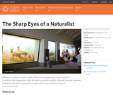 The Sharp Eyes of a Naturalist