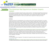 The American Red Squirrel an Outdoor Inquiry Lesson